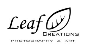 collaborazione con leaf creations