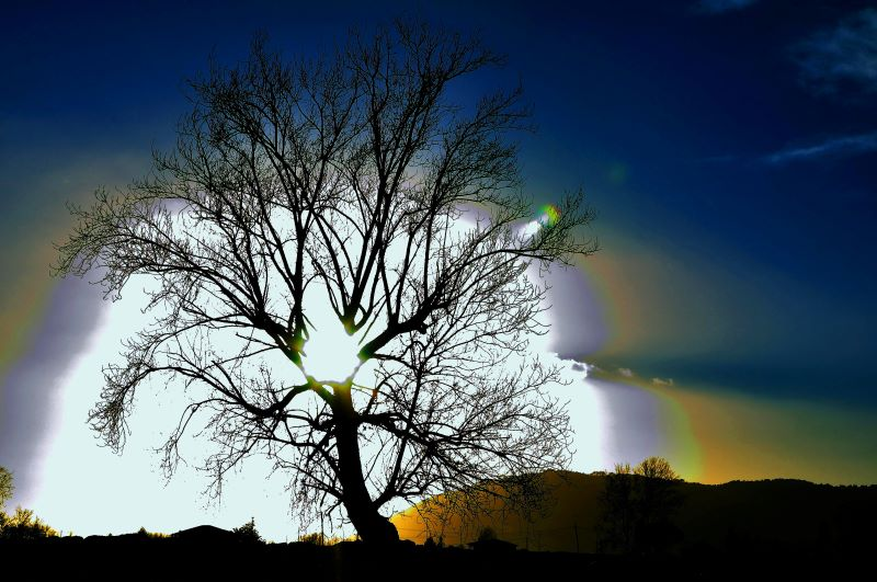 Scomposizione della luce