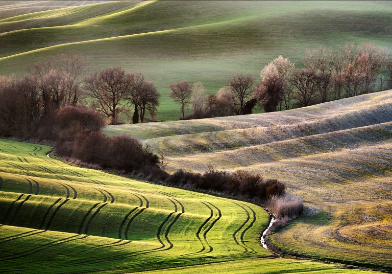 Colline Val D'Orcia