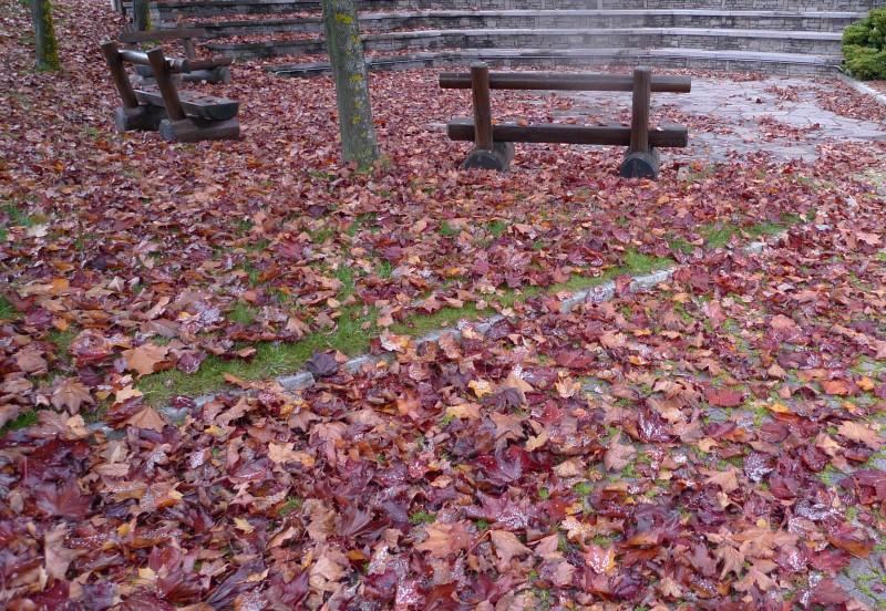 tappeto botanico