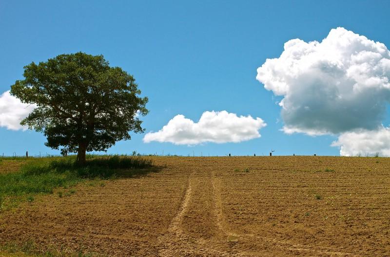 paesaggio umbro