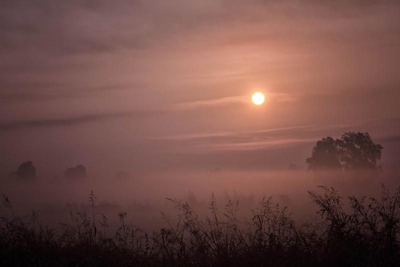 il profumo di un'alba