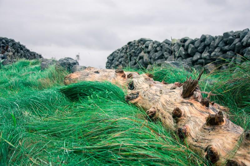 terra verde smeraldo