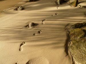 solo segni sulla sabbia