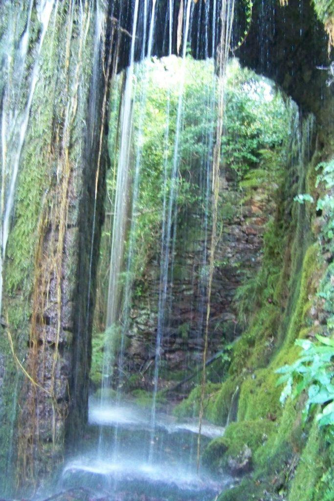 cascata di alghe naturale