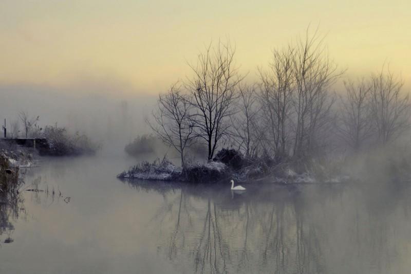 la poesia di un'alba