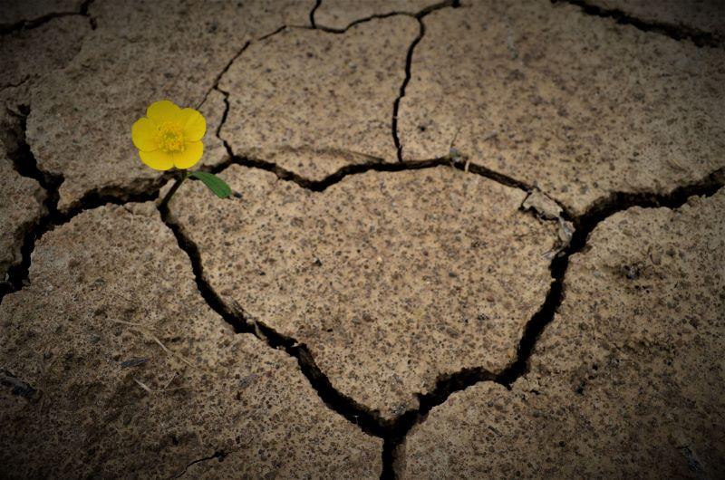 la vita avanza nonostante le difficoltà