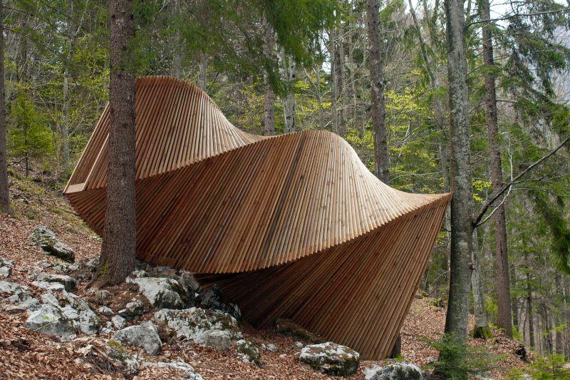 spirale nel bosco