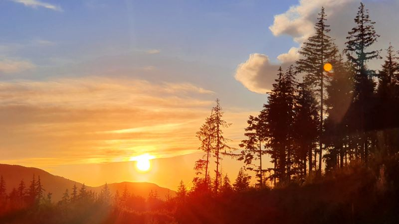 tramonto in mezzo alla natura