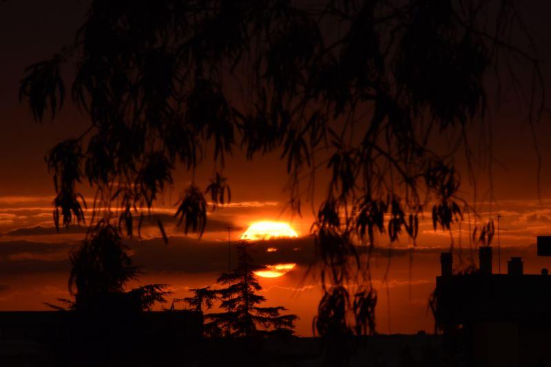 un incendio di caldi colori al tramonto tra alberi e tetti