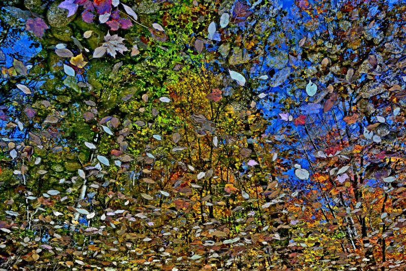 autunno nel new england